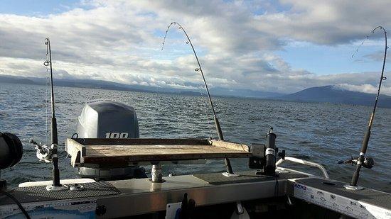Turangi, New Zealand: Trolling for lake trout on Lake Taupo