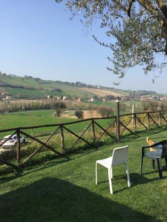 Colbordolo, Italy: photo2.jpg