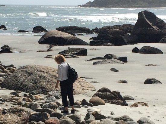 Cape Foulwind Walkway: photo0.jpg