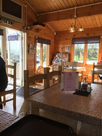 Саут-Молтон, UK: Delightful find to stop for breakfast, lunch or a snack. Very pleasant staff, lovely simple food
