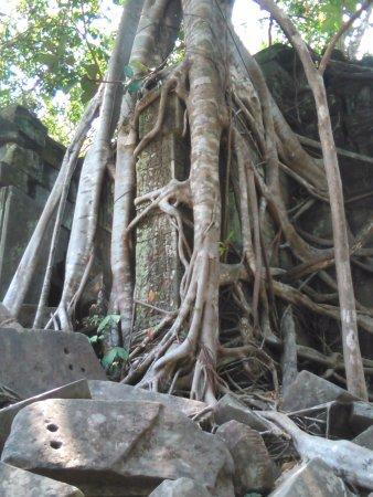 Siem Reap Province, Cambodia: beng mealea