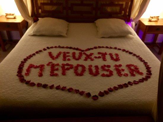 Beaucaire, Francia: photo0.jpg