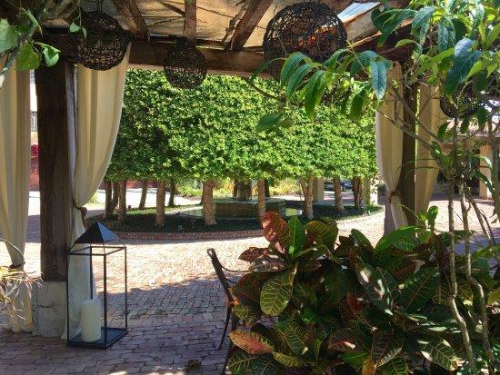 The Escalante : photo7.jpg