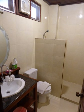 Phounsab Guesthouse: Good shower. Lots of hot water.