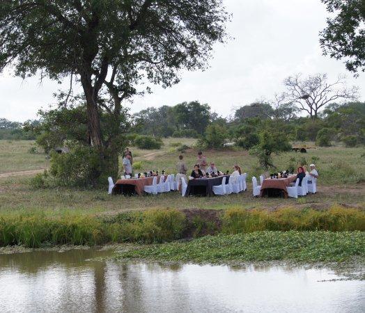 "Arathusa Safari Lodge: Breakfast in the ""Boondocks"""