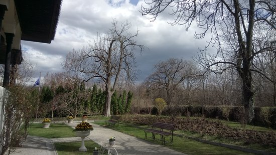 Bellu Manor: The courtyard