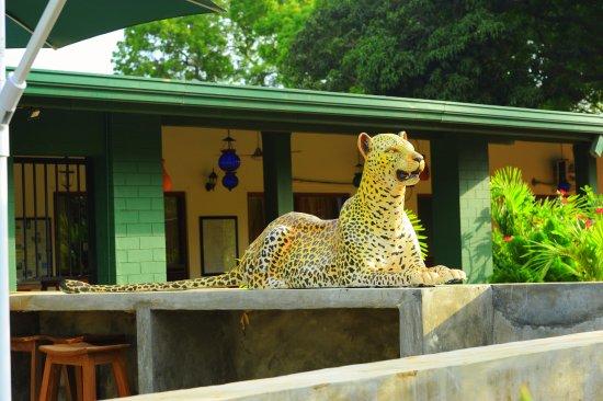 Leopard Den Hotel