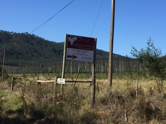 Herold Wine Estate : photo1.jpg