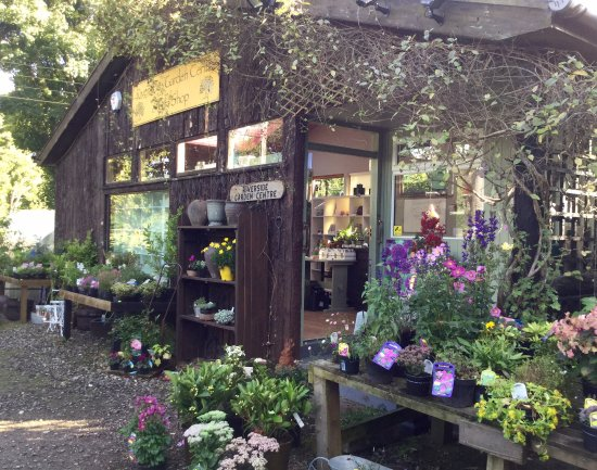 Comrie, UK: Riverside Garden Centre & Art Gallery