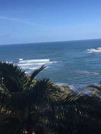 Калибиши, Доминика: photo3.jpg