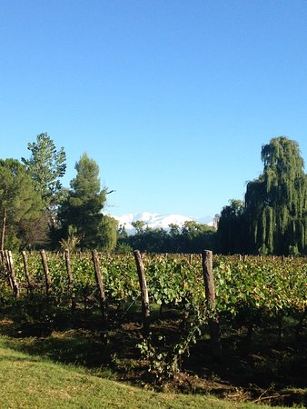 Postales Boutique Wine Hotels - Valle de Uco: photo1.jpg