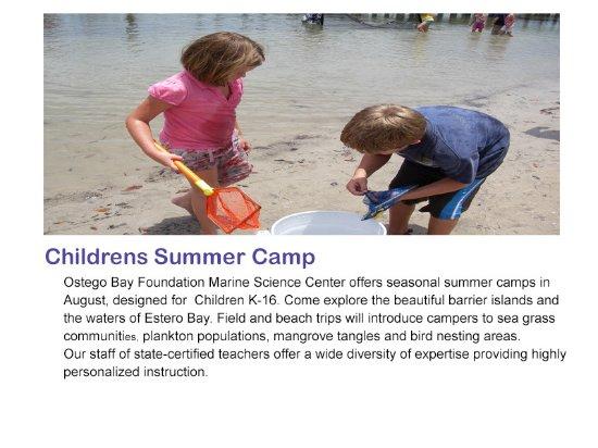Ostego Bay Marine Science Center : Childrens Summer Camp