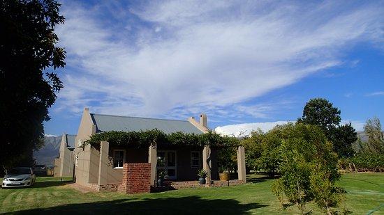 Saronsberg Vineyard Cottages Photo