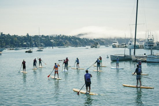 Sausalito, Kaliforniya: Stand Up Paddleboarding and Kayaking.
