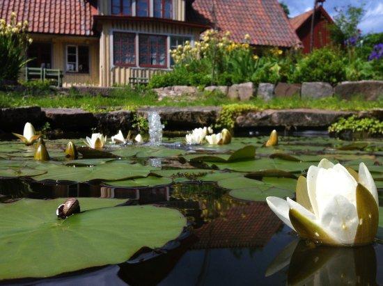 Perstorp, Suecia: Garden pond
