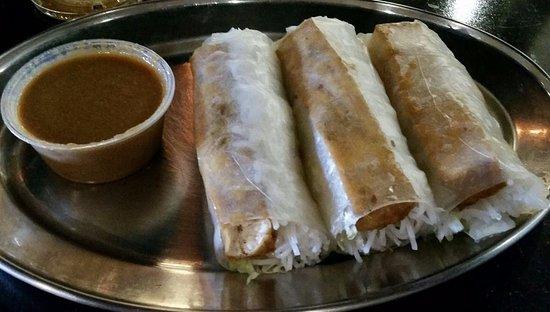 Webster, TX: Tofu spring rolls