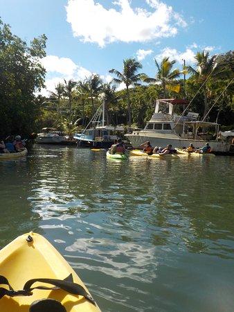 Caribbean Adventure Tours