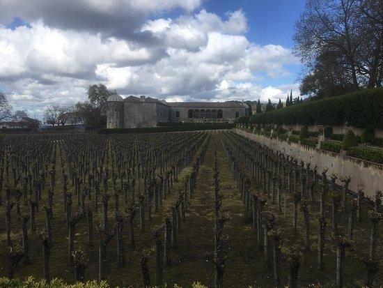 Bacalhôa Vinhos de Portugal: photo1.jpg