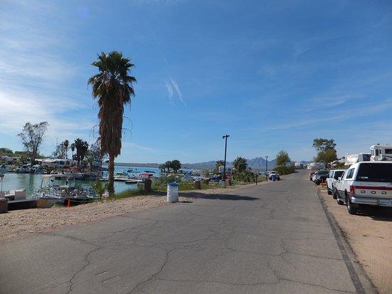 Lake Havasu: Edge of the lake where Crazy Horse RV Resort is located