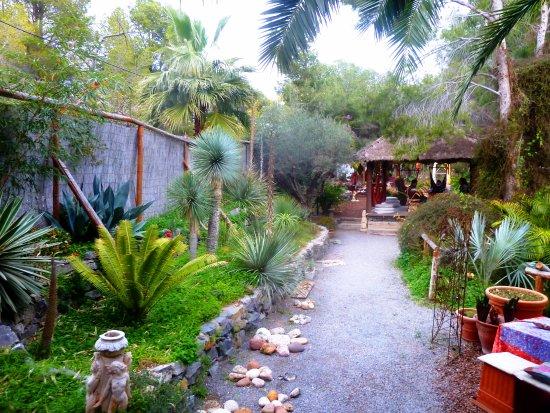 Cafeter a teter a picture of teteria jardin de los for Jardin de los sentidos