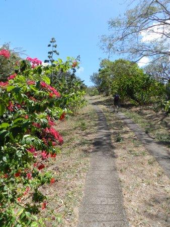 Santa Cruz, Nicaragua: driveway