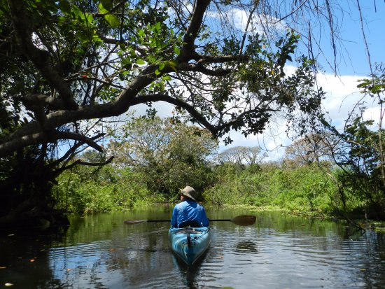 Santa Cruz, Nicaragua: Activities nearby: kayaking with a guide.