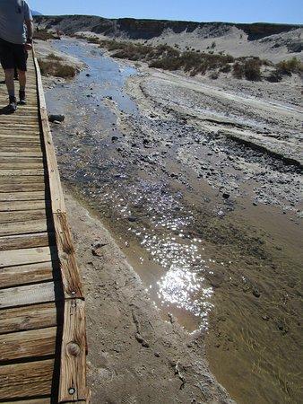 Salt Creek: Along the boardwalk