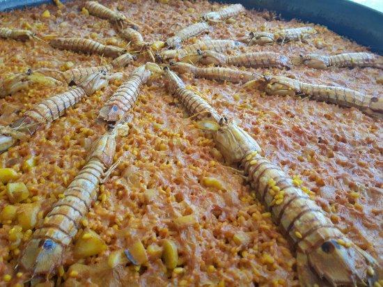 Puig, Spanien: Paella de galeras y sepia