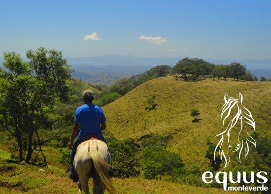 Equus Monteverde