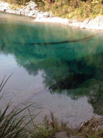 Wanaka, Selandia Baru: photo5.jpg
