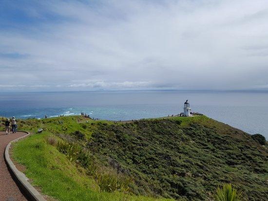 Каитаиа, Новая Зеландия: 20170323_131614_large.jpg
