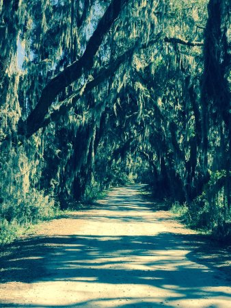 Hardeeville, Güney Carolina: The Scenic 4 Mile Loop