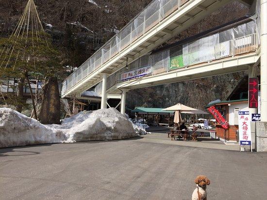 Hida Daishonyudo Cave : photo0.jpg