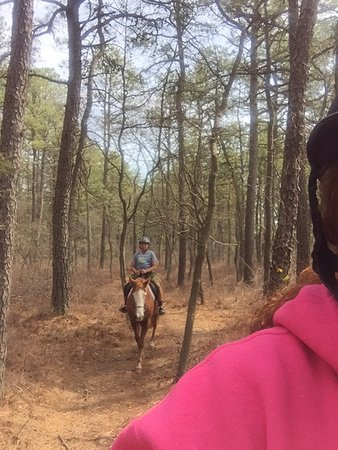 Mays Landing, NJ: trail ride