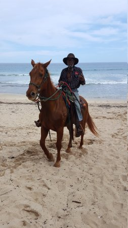 Fabulous Horseback Riding In Kauai On
