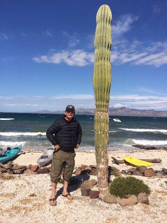 Mar y Desierto, Baja California Sur Mexico