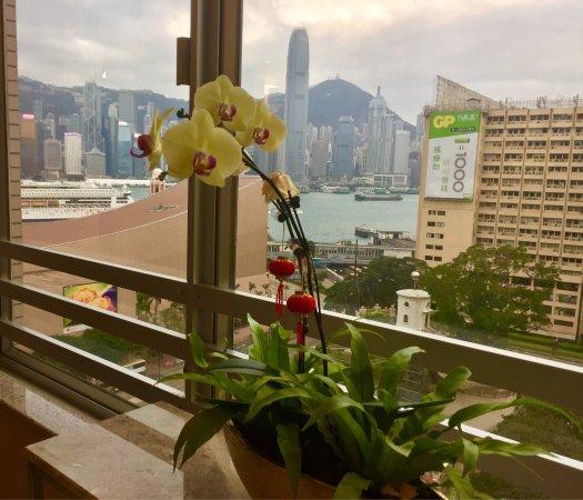 살리스버리 - YMCA 오브 홍콩 이미지