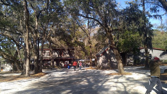Wadmalaw Island, Carolina del Sur: view from the parking of the Firefly Distillery