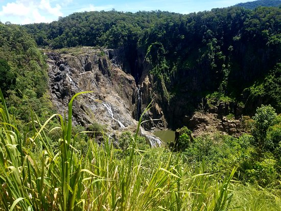 Kuranda, Australia: Stop where you can get off for a great view of the falls