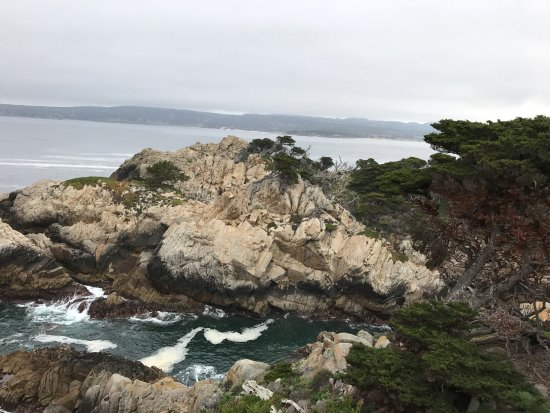 Point Lobos State Reserve: Beautiful Point Lobos