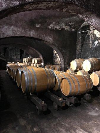 Stone Hill Winery : photo3.jpg