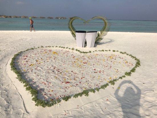 Paradise Island Resort & Spa: photo7.jpg