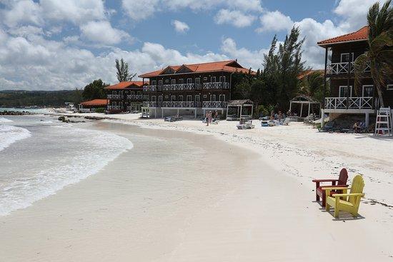 Mangos Jamaica Updated 2019 Prices Reviews Photos