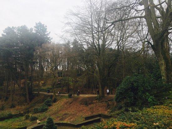 Bramhall, UK: photo0.jpg