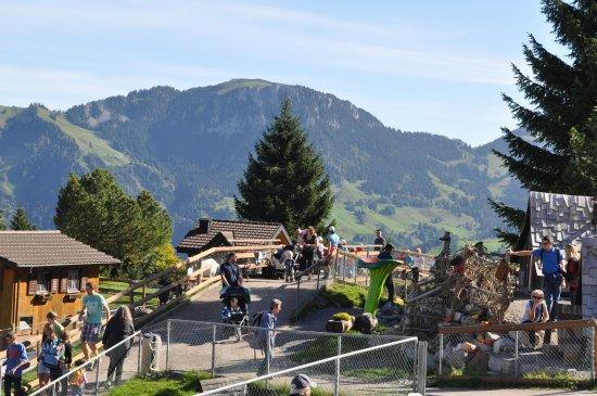Dallenwil, Suíça: Blick von Bergstation Richung 5-Stern-Hexenspielplatz und Sommerrodelbahn
