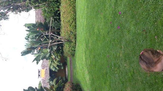 Porta Hotel Antigua: 20170311_103113_large.jpg