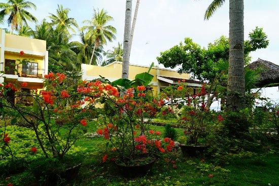 Lubi Resort Santander: 庭園