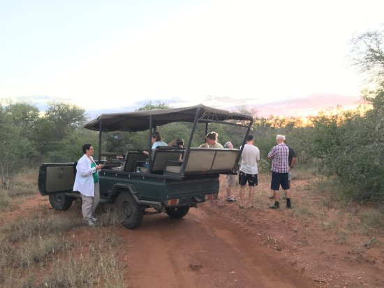 Tshukudu Bush Camp: Typical vehicle for game tours