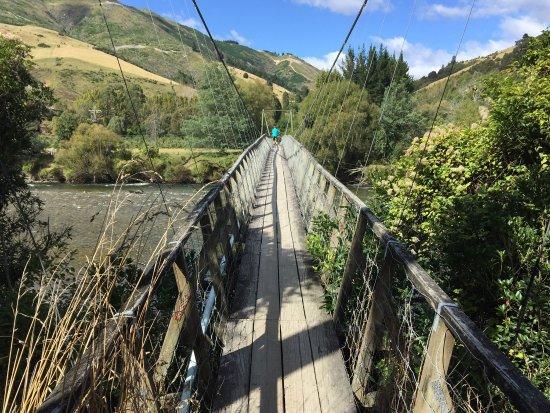 Mapua, New Zealand: photo1.jpg