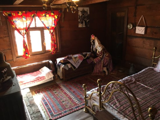 AltInkoy Acik Hava Muzesi: It's a great open air museum with traditional Turkish village museums.